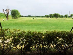戸田のゴルフ