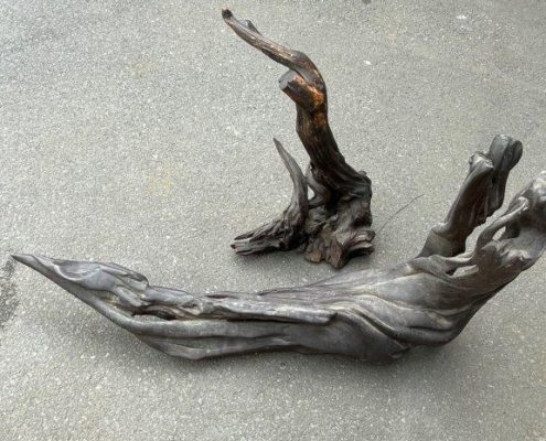 流木(原木)